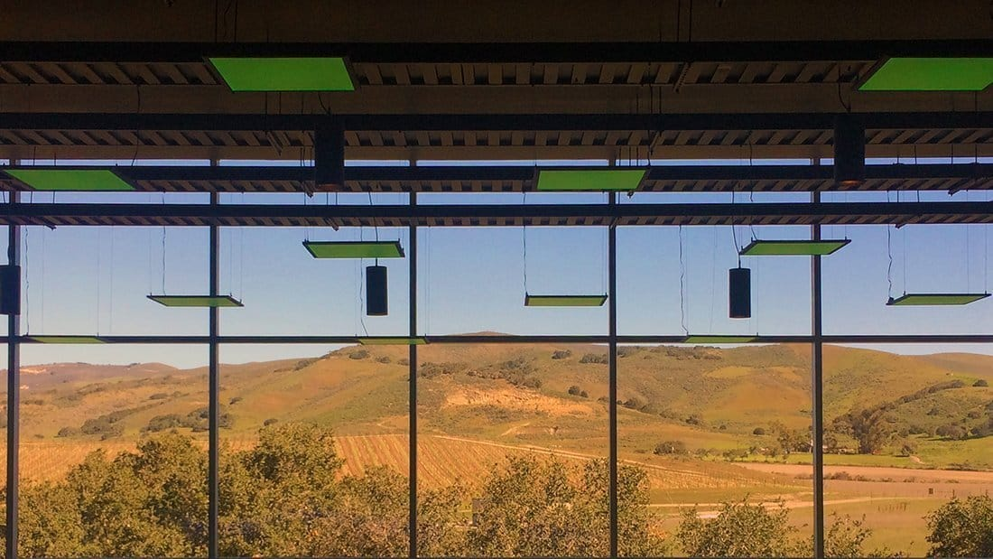 Green LED lights hanging from the ceiling in a modern winery with floor to ceiling windows looking out over the vineyards.