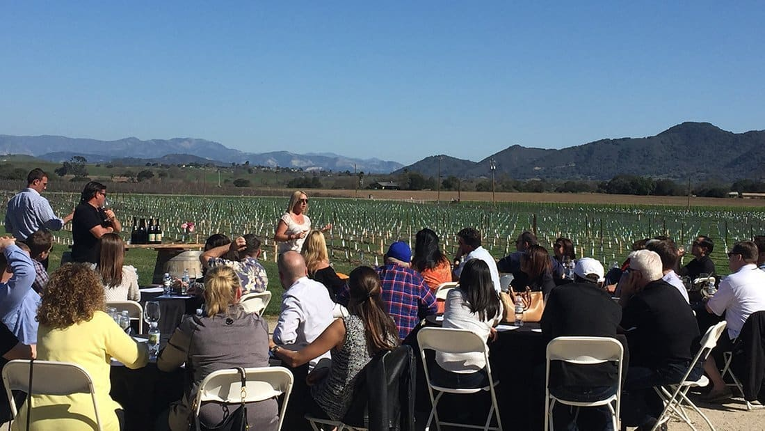 a pop-up tasting in a vineyard.